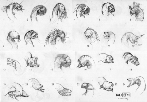 Sea Monster Head Concepts | 2012